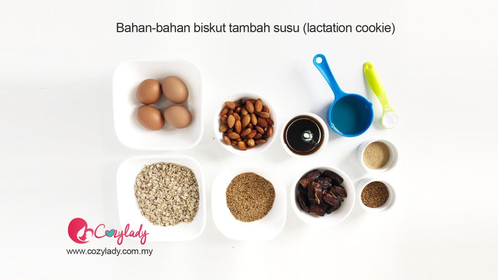 resepi lactation cookie
