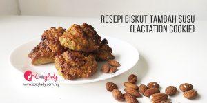 Lactation Cookie - Resepi Biskut Tambah Susu Ibu